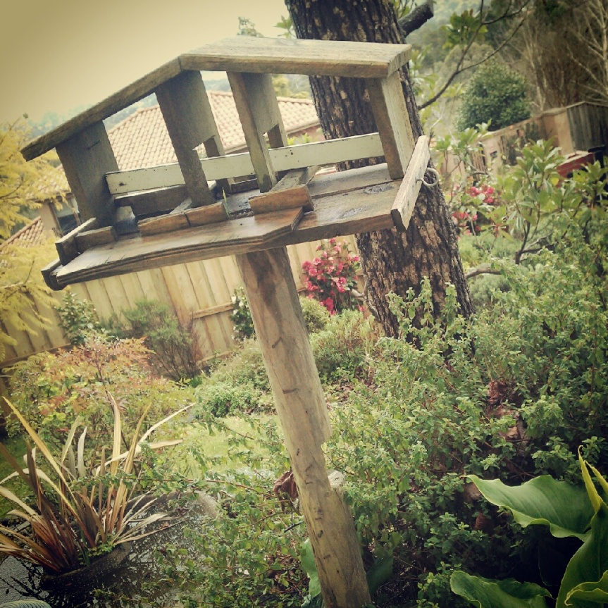 Meandering Garden Diary: The First Tour – A Bird House!